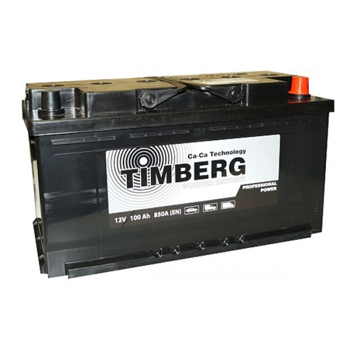 Аккумулятор TIMBERG  PROFESSIONAL 100Ah