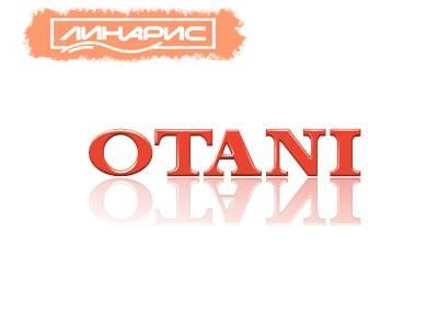 грузовые шины Otani
